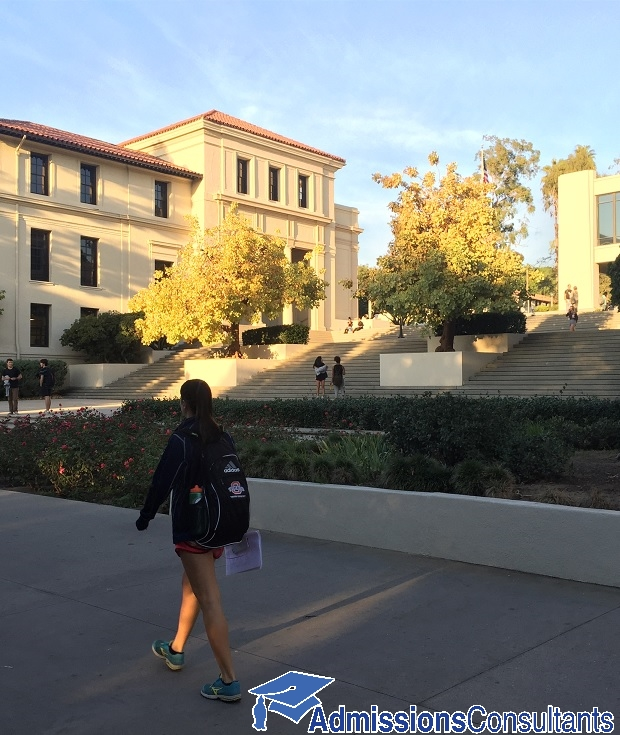 Occidental College admission statistics